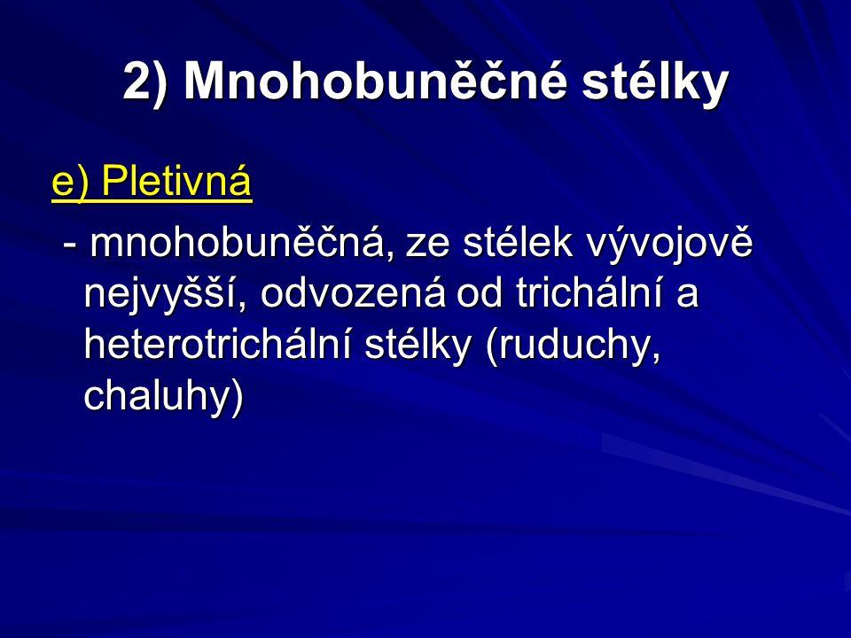 2) Mnohobuněčné stélky e) Pletivná - mnohobuněčná, ze stélek vývojově nejvyšší, odvozená od trichální a heterotrichální stélky (ruduchy, chaluhy) - mn