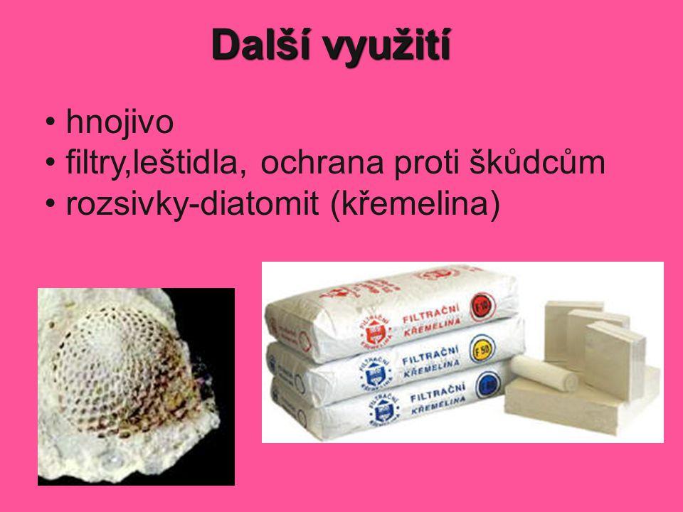 Další využití hnojivo filtry,leštidla, ochrana proti škůdcům rozsivky-diatomit (křemelina)