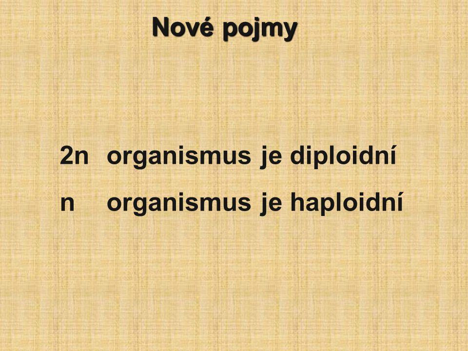 Nové pojmy 2norganismus je diploidní norganismus je haploidní