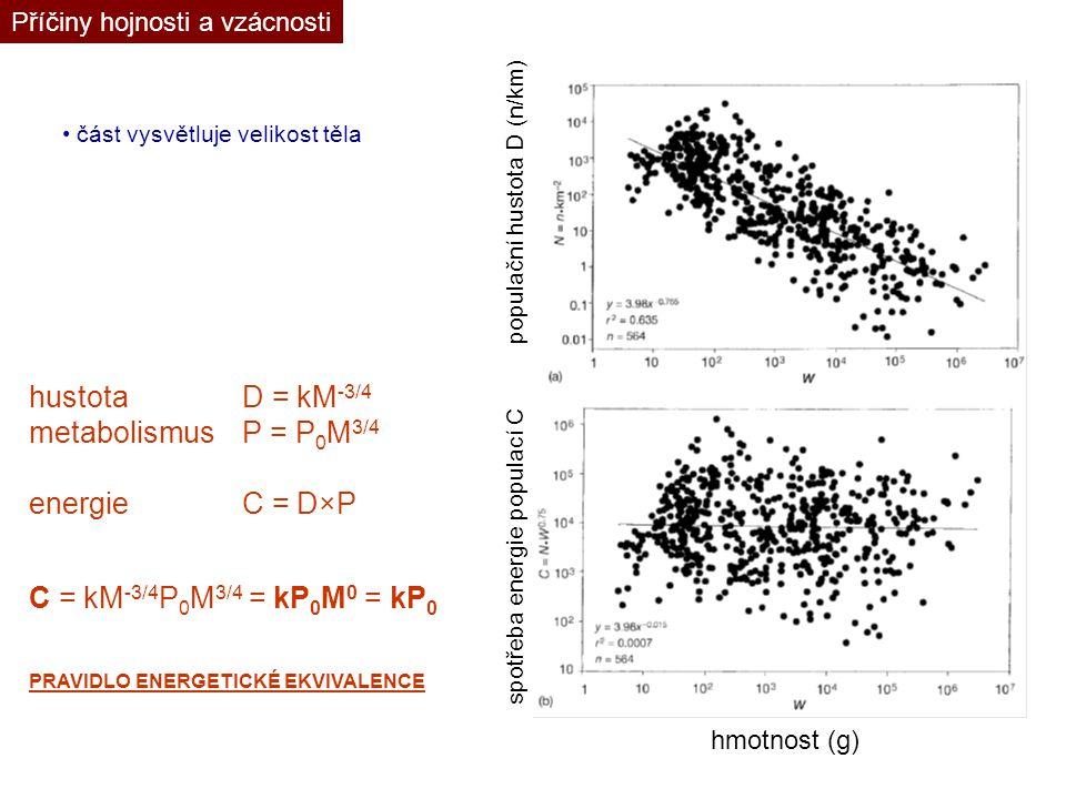 Příčiny hojnosti a vzácnosti část vysvětluje velikost těla hmotnost (g) populační hustota D (n/km) spotřeba energie populací C hustotaD = kM -3/4 meta