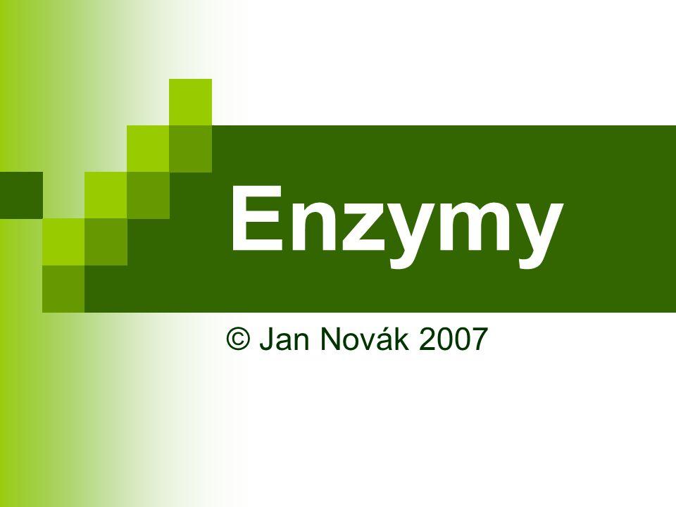 Enzymy © Jan Novák 2007
