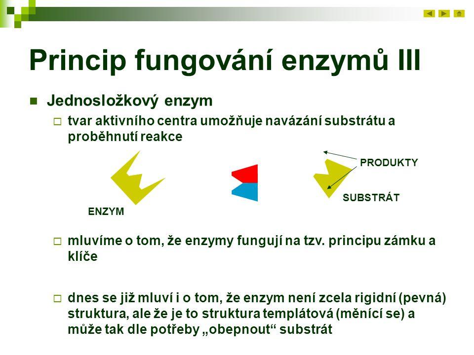 Princip fungování enzymů III Jednosložkový enzym  tvar aktivního centra umožňuje navázání substrátu a proběhnutí reakce ENZYM SUBSTRÁT PRODUKTY  mluvíme o tom, že enzymy fungují na tzv.