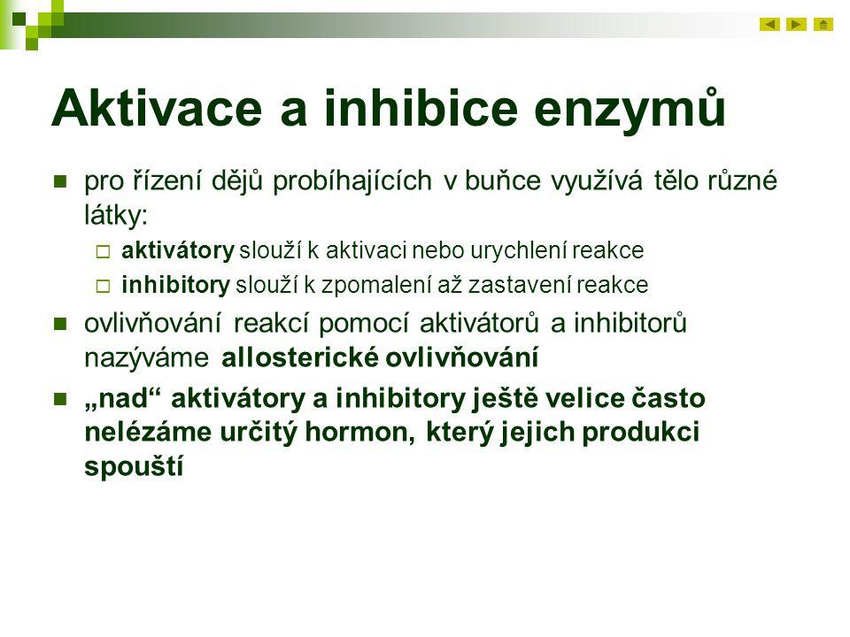 """Aktivace a inhibice enzymů pro řízení dějů probíhajících v buňce využívá tělo různé látky:  aktivátory slouží k aktivaci nebo urychlení reakce  inhibitory slouží k zpomalení až zastavení reakce ovlivňování reakcí pomocí aktivátorů a inhibitorů nazýváme allosterické ovlivňování """"nad aktivátory a inhibitory ještě velice často nelézáme určitý hormon, který jejich produkci spouští"""