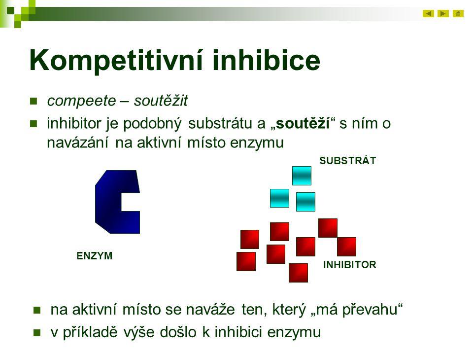 """Kompetitivní inhibice compeete – soutěžit inhibitor je podobný substrátu a """"soutěží s ním o navázání na aktivní místo enzymu ENZYM SUBSTRÁT INHIBITOR na aktivní místo se naváže ten, který """"má převahu v příkladě výše došlo k inhibici enzymu"""