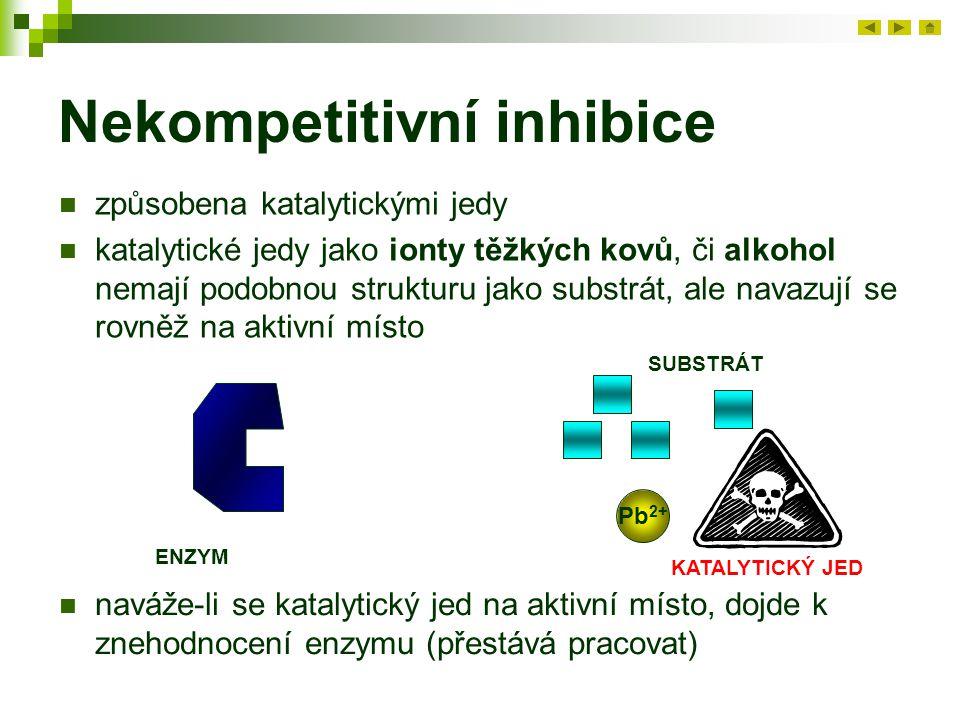 Nekompetitivní inhibice způsobena katalytickými jedy katalytické jedy jako ionty těžkých kovů, či alkohol nemají podobnou strukturu jako substrát, ale navazují se rovněž na aktivní místo ENZYM SUBSTRÁT Pb 2+ KATALYTICKÝ JED naváže-li se katalytický jed na aktivní místo, dojde k znehodnocení enzymu (přestává pracovat)