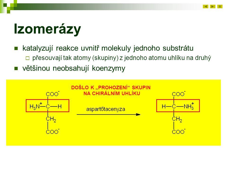 """Izomerázy katalyzují reakce uvnitř molekuly jednoho substrátu  přesouvají tak atomy (skupiny) z jednoho atomu uhlíku na druhý většinou neobsahují koenzymy DOŠLO K """"PROHOZENÍ SKUPIN NA CHIRÁLNÍM UHLÍKU"""