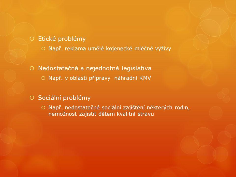  Etické problémy  Např. reklama umělé kojenecké mléčné výživy  Nedostatečná a nejednotná legislativa  Např. v oblasti přípravy náhradní KMV  Soci