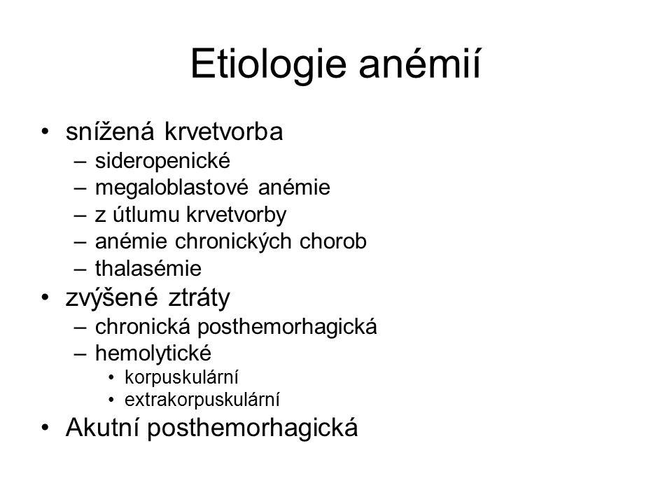 Etiologie anémií snížená krvetvorba –sideropenické –megaloblastové anémie –z útlumu krvetvorby –anémie chronických chorob –thalasémie zvýšené ztráty –