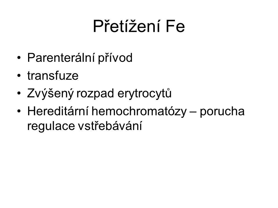 Vitamín B 12 Cyanocobalamin, hydroxycobalamin, deoxyadenosylcobalamin, methylcobalamin V potravě vázán na proteiny Maximální resorpční kapacita odpovídá potřebám, velké zásoby v játrech Tvorba erytrocytů, perniciózní anemie