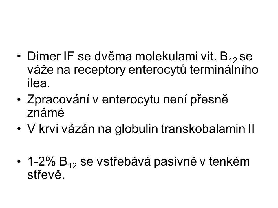 Dimer IF se dvěma molekulami vit. B 12 se váže na receptory enterocytů terminálního ilea. Zpracování v enterocytu není přesně známé V krvi vázán na gl