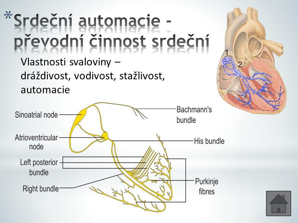 Vlastnosti svaloviny – dráždivost, vodivost, stažlivost, automacie