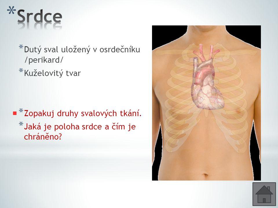 * Dutý sval uložený v osrdečníku /perikard/ * Kuželovitý tvar * Zopakuj druhy svalových tkání. * Jaká je poloha srdce a čím je chráněno?