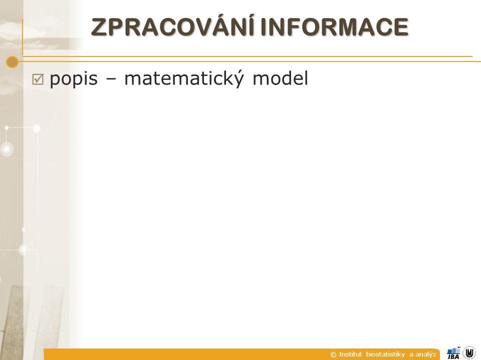 © Institut biostatistiky a analýz ZPRACOVÁNÍ INFORMACE  popis