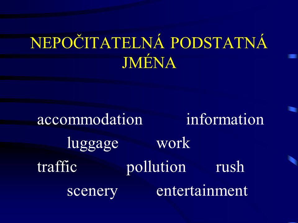 NEPOČITATELNÁ PODSTATNÁ JMÉNA accommodationinformation luggagework trafficpollutionrush sceneryentertainment