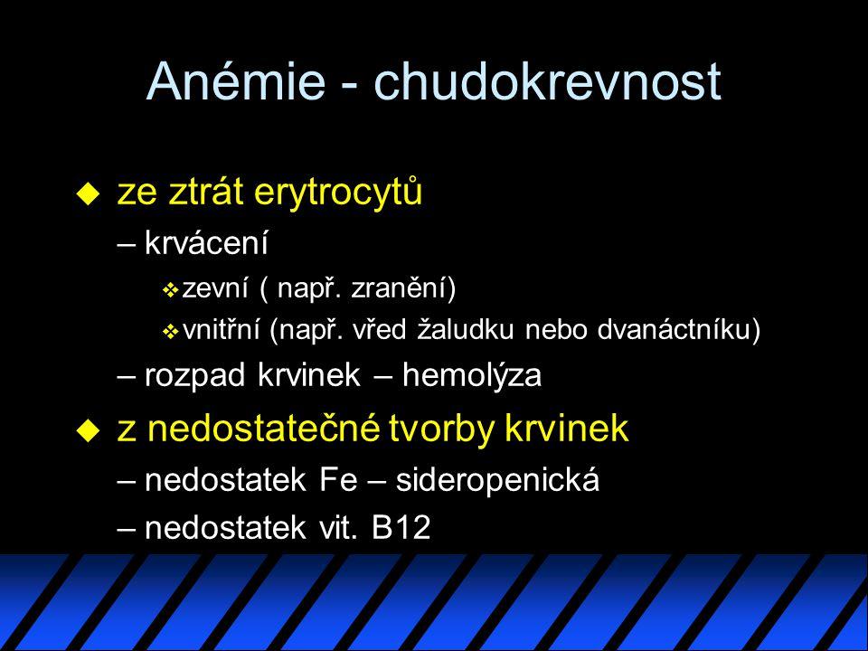Anémie - chudokrevnost u ze ztrát erytrocytů –krvácení v zevní ( např.