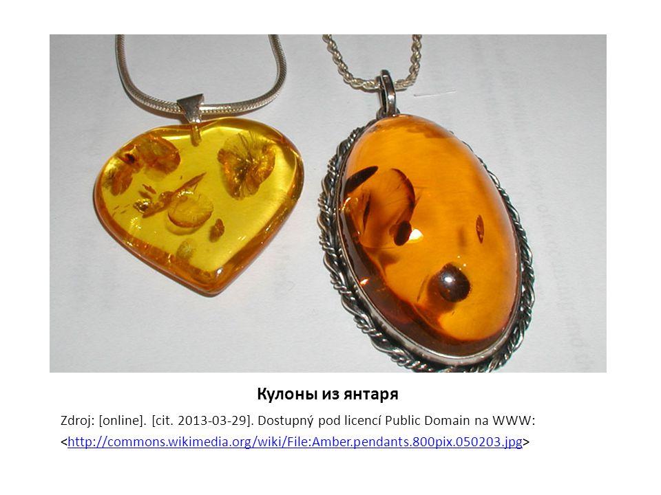 Кулоны из янтаря Zdroj: [online]. [cit. 2013-03-29]. Dostupný pod licencí Public Domain na WWW: http://commons.wikimedia.org/wiki/File:Amber.pendants.