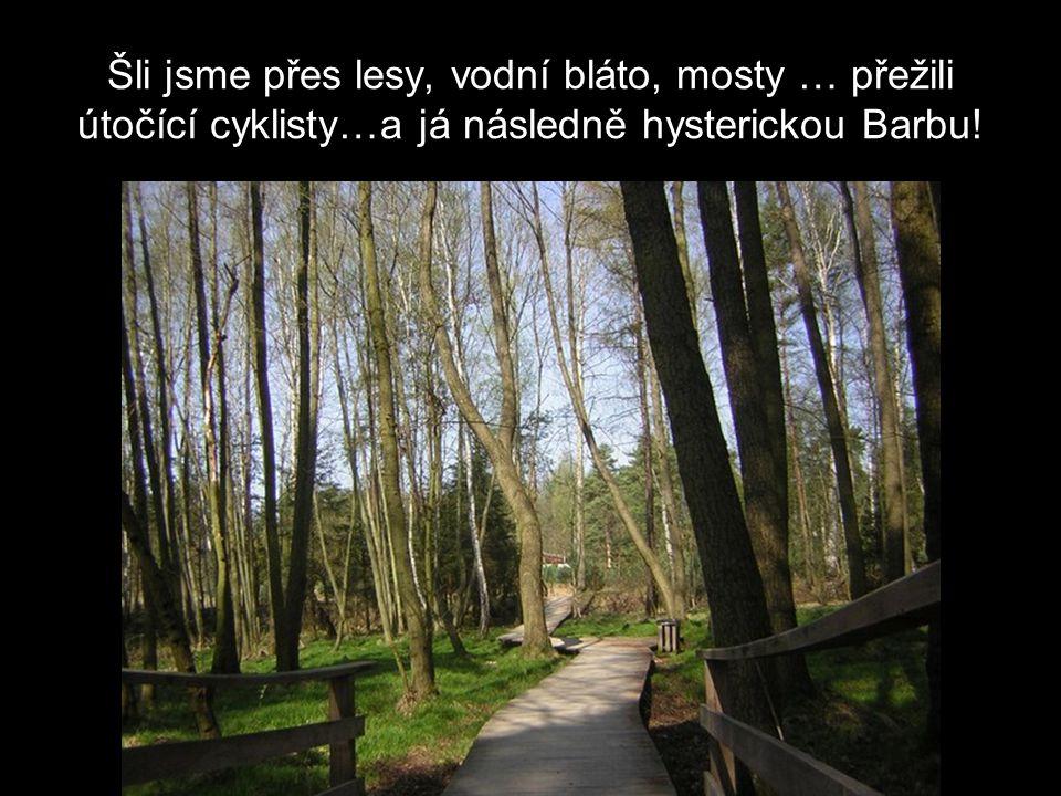 Šli jsme přes lesy, vodní bláto, mosty … přežili útočící cyklisty…a já následně hysterickou Barbu!