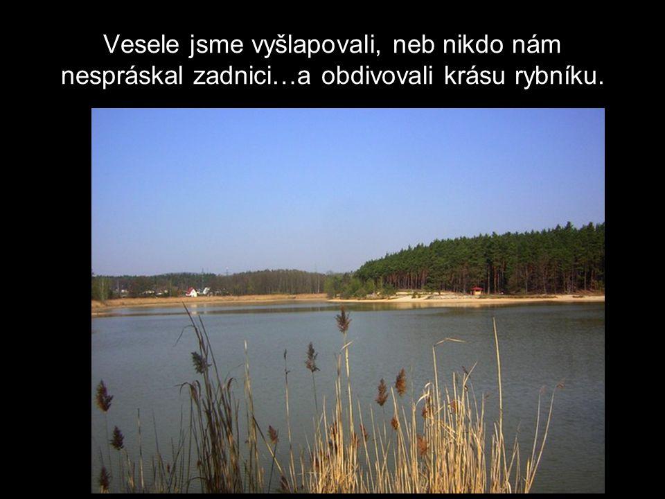 Vesele jsme vyšlapovali, neb nikdo nám nespráskal zadnici…a obdivovali krásu rybníku.