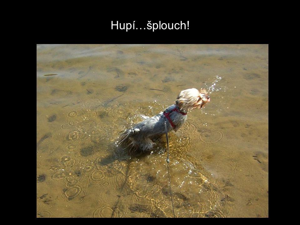 Hupí…šplouch!