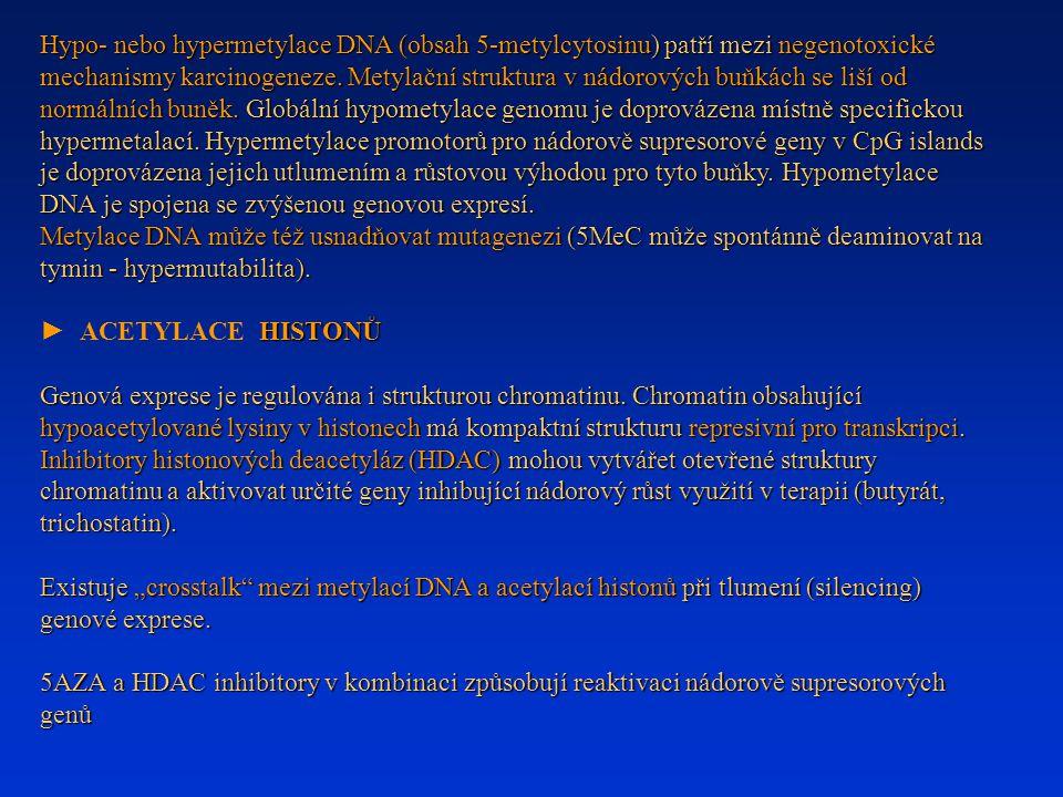 Hypo- nebo hypermetylace DNA (obsah 5-metylcytosinu) patří mezi negenotoxické mechanismy karcinogeneze. Metylační struktura v nádorových buňkách se li