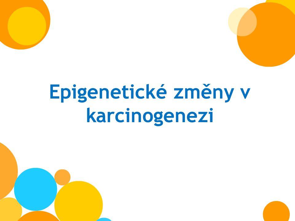 Epigenetické změny v karcinogenezi