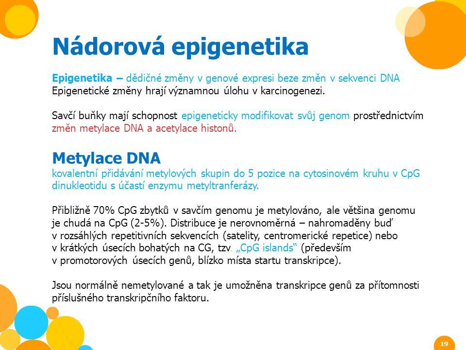Nádorová epigenetika Epigenetika – dědičné změny v genové expresi beze změn v sekvenci DNA Epigenetické změny hrají významnou úlohu v karcinogenezi. S