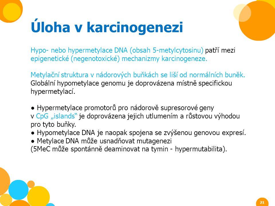 Úloha v karcinogenezi Hypo- nebo hypermetylace DNA (obsah 5-metylcytosinu) patří mezi epigenetické (negenotoxické) mechanizmy karcinogeneze. Metylační