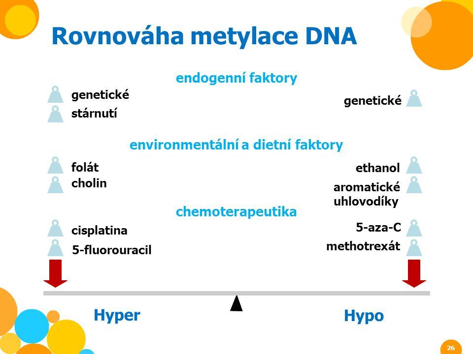 genetické Rovnováha metylace DNA endogenní faktory environmentální a dietní faktory chemoterapeutika stárnutí genetické folát cholin aromatické uhlovo