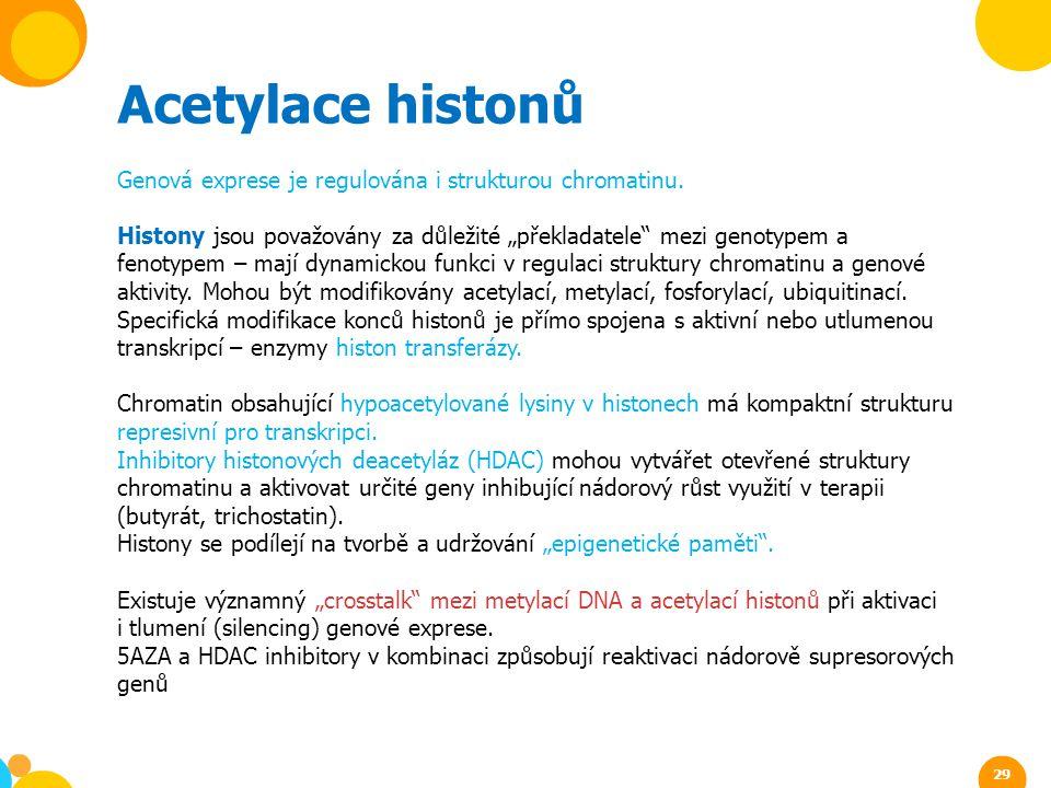 """Acetylace histonů Genová exprese je regulována i strukturou chromatinu. Histony jsou považovány za důležité """"překladatele"""" mezi genotypem a fenotypem"""
