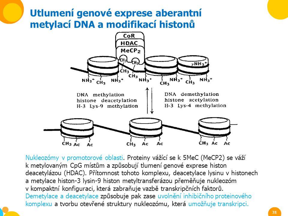 Utlumení genové exprese aberantní metylací DNA a modifikací histonů Nukleozómy v promotorové oblasti. Proteiny vážící se k 5MeC (MeCP2) se váží k mety