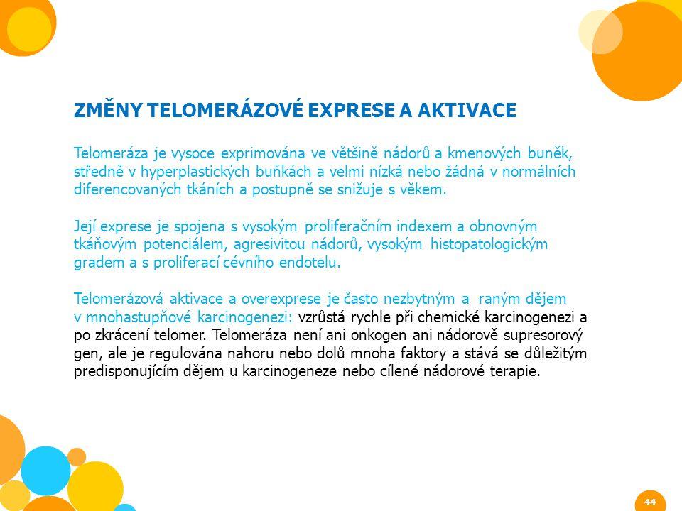 ZMĚNY TELOMERÁZOVÉ EXPRESE A AKTIVACE Telomeráza je vysoce exprimována ve většině nádorů a kmenových buněk, středně v hyperplastických buňkách a velmi
