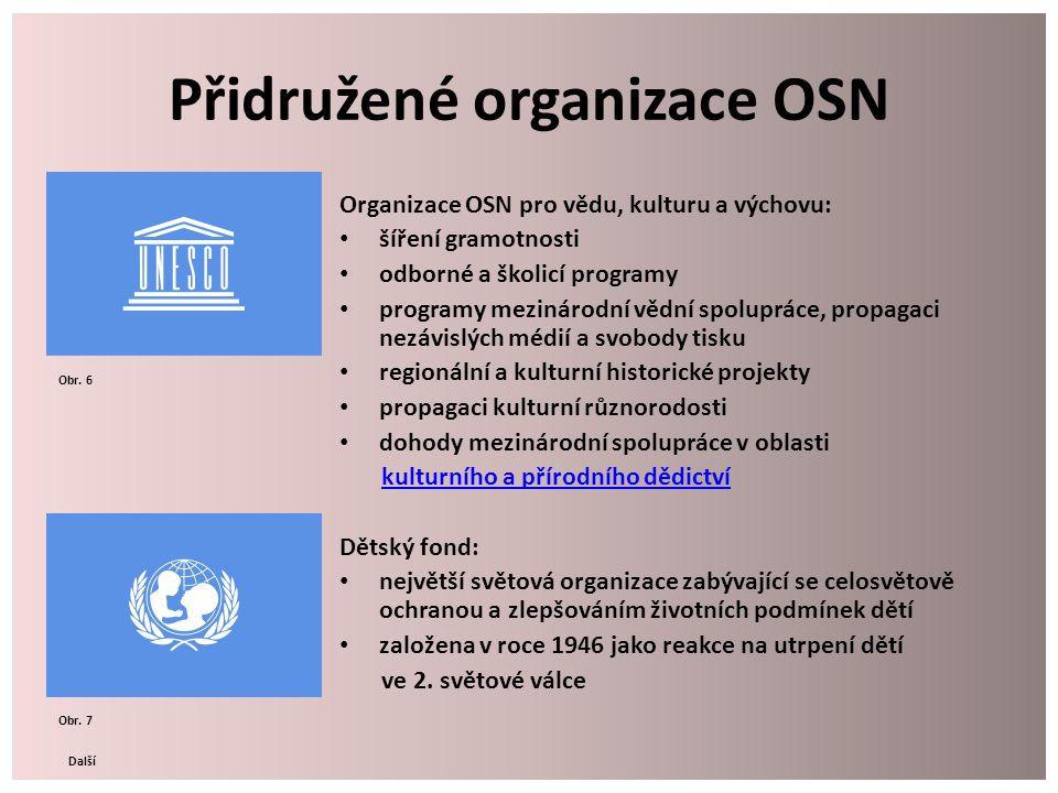 Přidružené organizace OSN Organizace OSN pro vědu, kulturu a výchovu: šíření gramotnosti odborné a školicí programy programy mezinárodní vědní spolupr