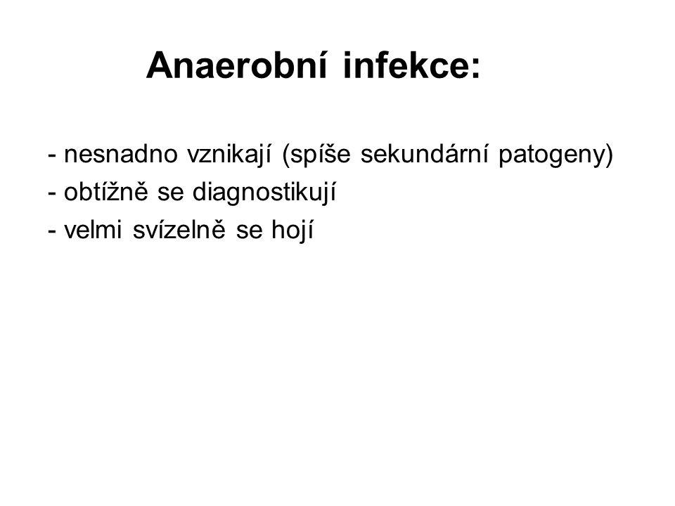Anaerobní infekce: - nesnadno vznikají (spíše sekundární patogeny) - obtížně se diagnostikují - velmi svízelně se hojí