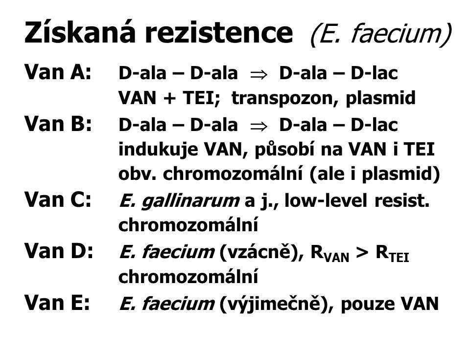 Získaná rezistence (E. faecium) Van A: D-ala – D-ala  D-ala – D-lac VAN + TEI; transpozon, plasmid Van B: D-ala – D-ala  D-ala – D-lac indukuje VAN,