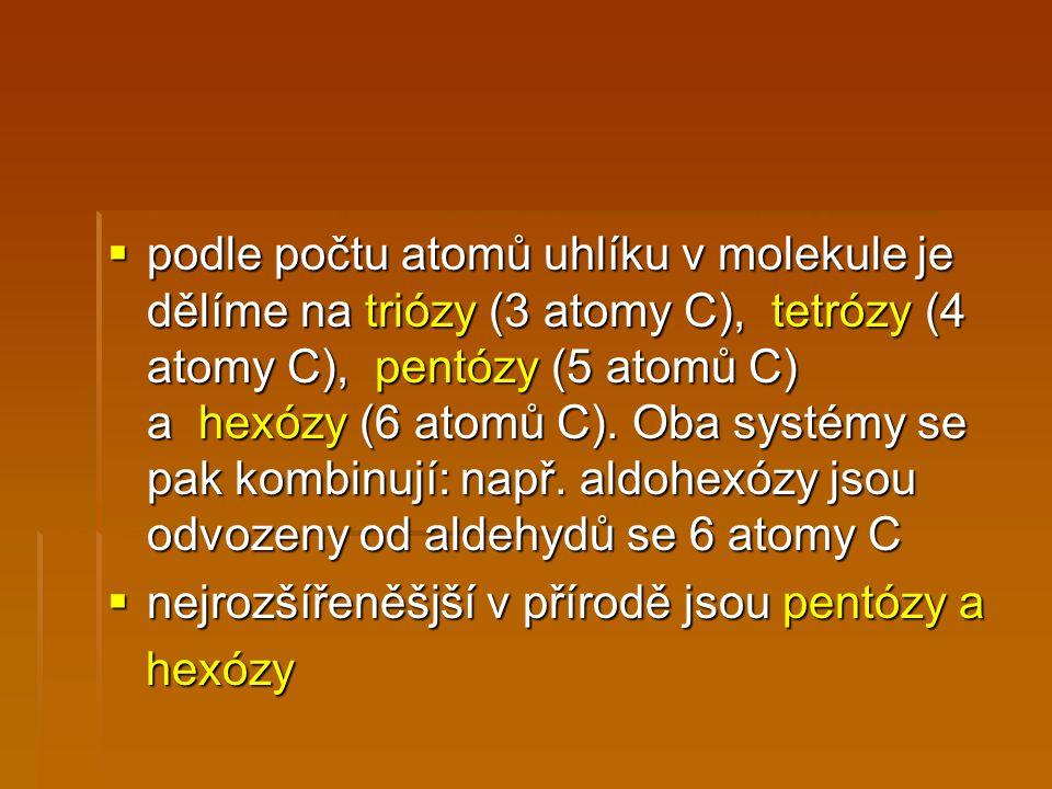  podle počtu atomů uhlíku v molekule je dělíme na triózy (3 atomy C), tetrózy (4 atomy C), pentózy (5 atomů C) a hexózy (6 atomů C).