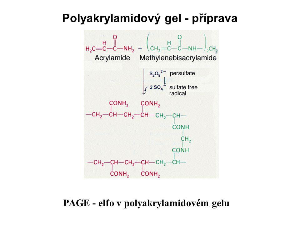 Polyakrylamidový gel - příprava PAGE - elfo v polyakrylamidovém gelu