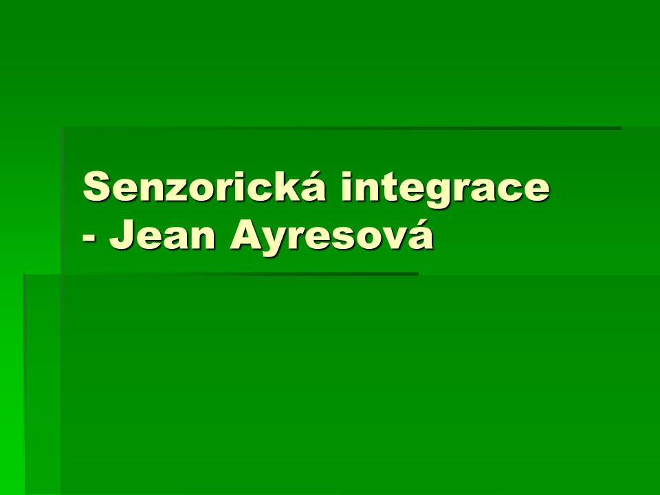 Senzorická integrace - Jean Ayresová