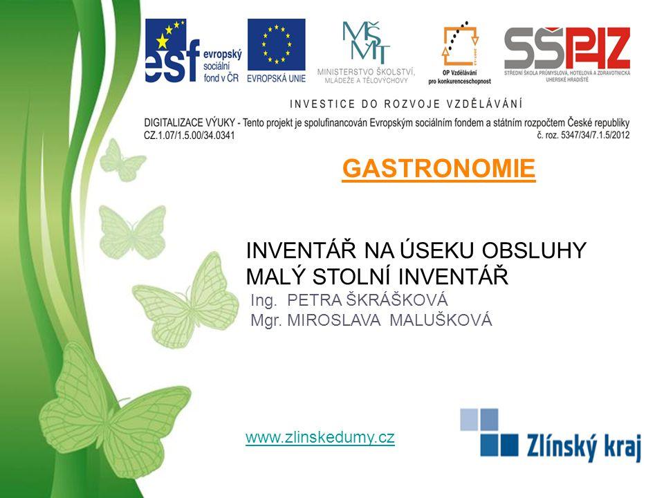 Free Powerpoint TemplatesPage 12 POUŽITÁ LITERATURA SALAČ, Gustav.