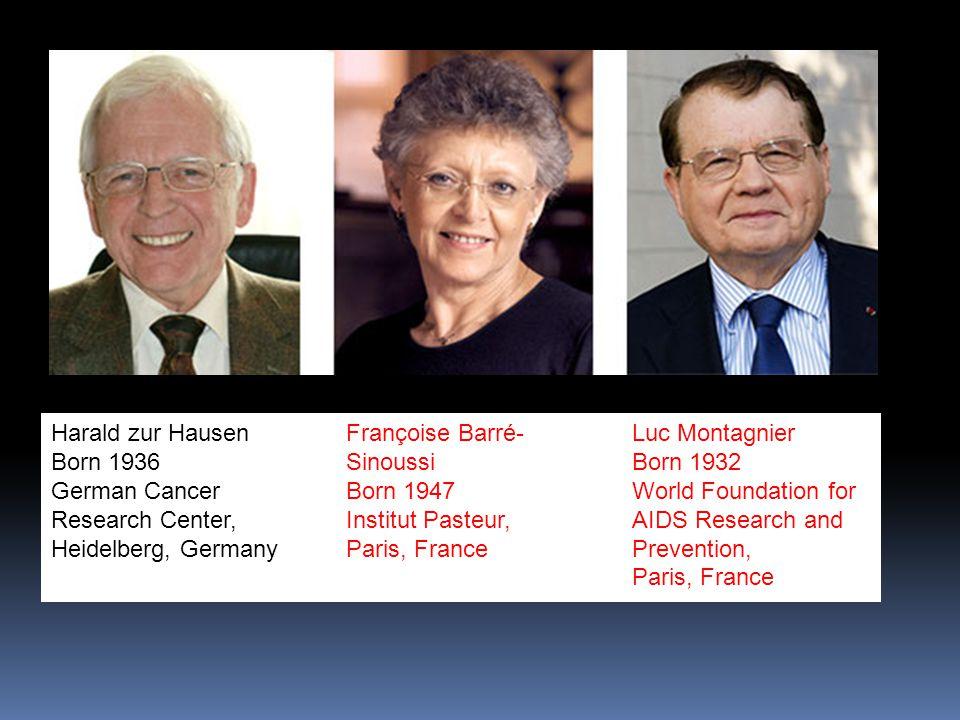 Harald zur Hausen Born 1936 German Cancer Research Center, Heidelberg, Germany Françoise Barré- Sinoussi Born 1947 Institut Pasteur, Paris, France Luc Montagnier Born 1932 World Foundation for AIDS Research and Prevention, Paris, France