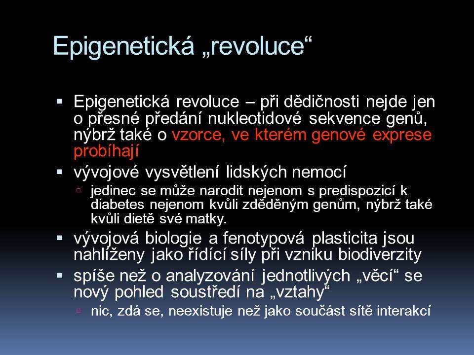 """Epigenetická """"revoluce""""  Epigenetická revoluce – při dědičnosti nejde jen o přesné předání nukleotidové sekvence genů, nýbrž také o vzorce, ve kterém"""