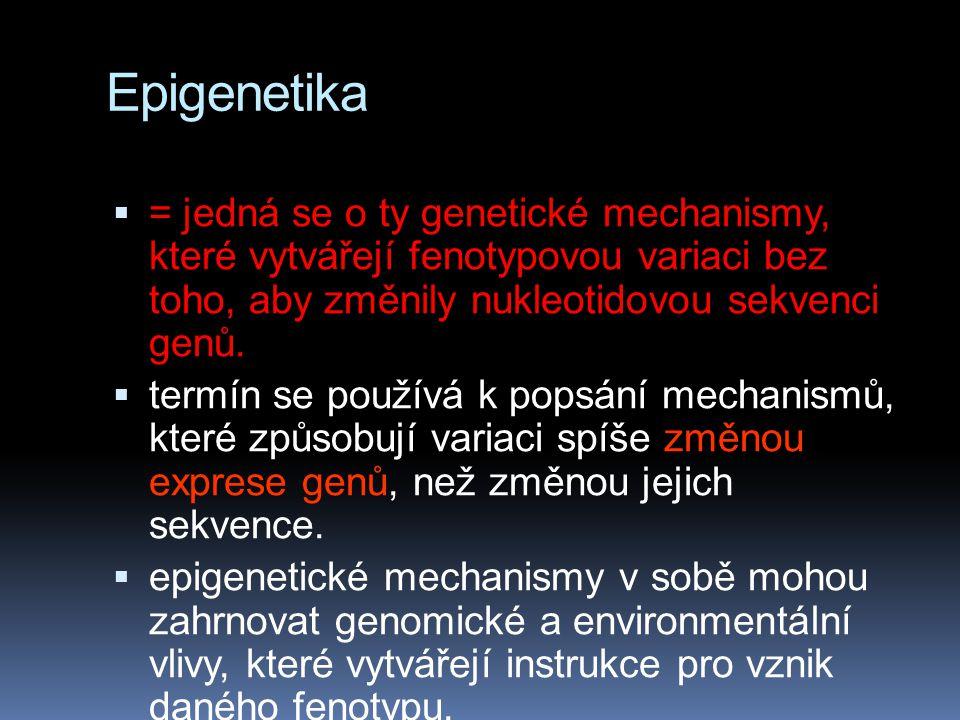 Epigenetika  = jedná se o ty genetické mechanismy, které vytvářejí fenotypovou variaci bez toho, aby změnily nukleotidovou sekvenci genů.  termín se