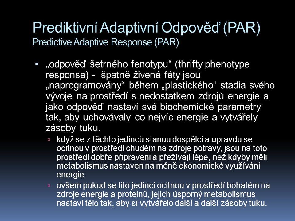 """Prediktivní Adaptivní Odpověď (PAR) Predictive Adaptive Response (PAR)  """"odpověď šetrného fenotypu (thrifty phenotype response) - špatně živené féty jsou """"naprogramovány během """"plastického stadia svého vývoje na prostředí s nedostatkem zdrojů energie a jako odpověď nastaví své biochemické parametry tak, aby uchovávaly co nejvíc energie a vytvářely zásoby tuku."""