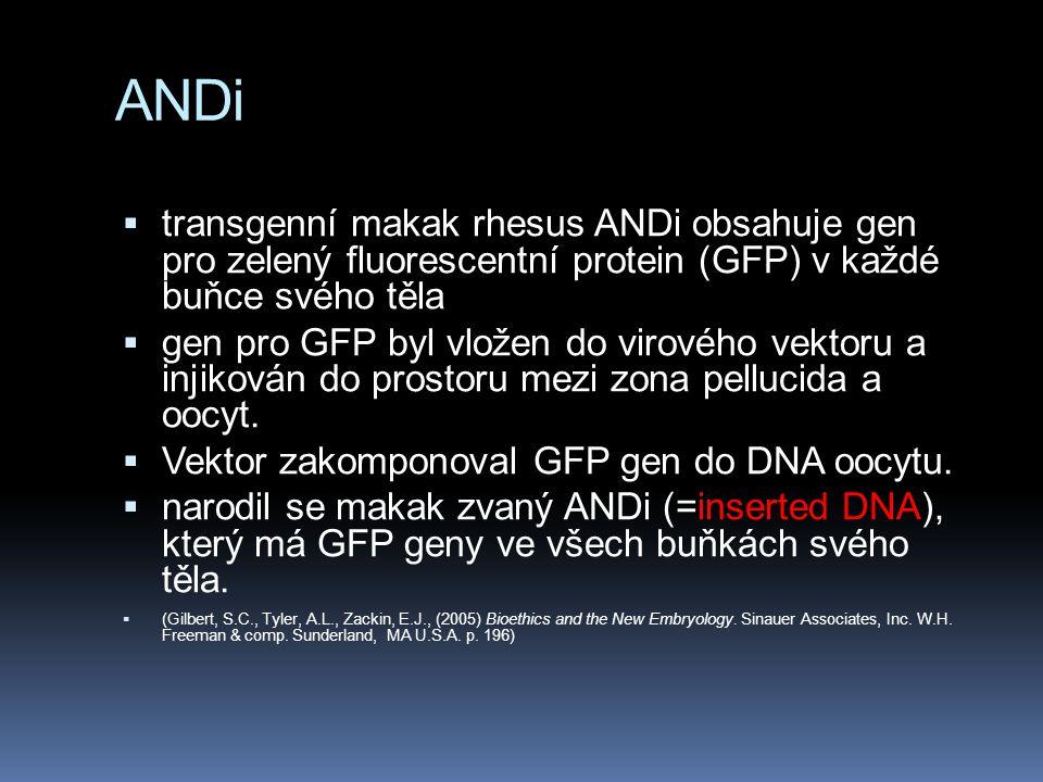  transgenní makak rhesus ANDi obsahuje gen pro zelený fluorescentní protein (GFP) v každé buňce svého těla  gen pro GFP byl vložen do virového vektoru a injikován do prostoru mezi zona pellucida a oocyt.