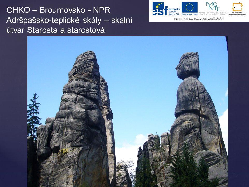 CHKO – Broumovsko - NPR Adršpašsko-teplické skály – skalní útvar Starosta a starostová