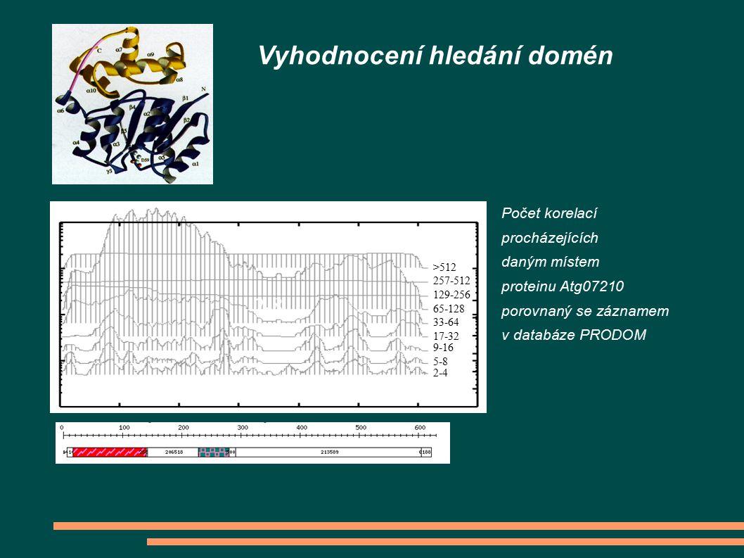 Vyhodnocení hledání domén 2-8 2-4 9-16 17-32 33-64 65-128 5-8 129-256 257-512 >512 Počet korelací procházejících daným místem proteinu Atg07210 porovn
