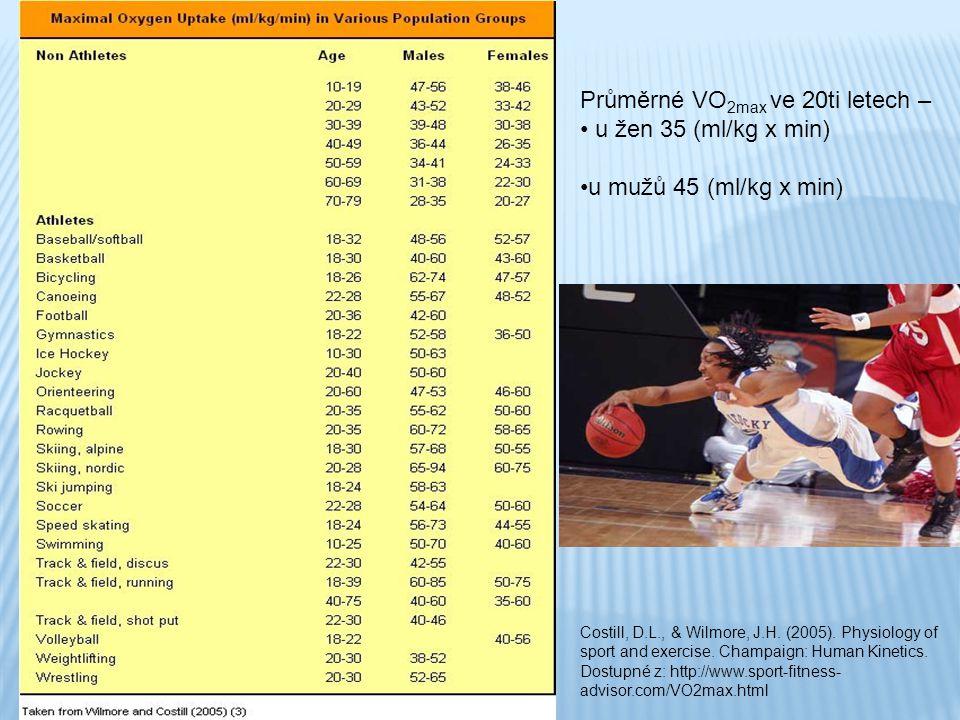 Průměrné VO 2max ve 20ti letech – u žen 35 (ml/kg x min) u mužů 45 (ml/kg x min) Costill, D.L., & Wilmore, J.H. (2005). Physiology of sport and exerci