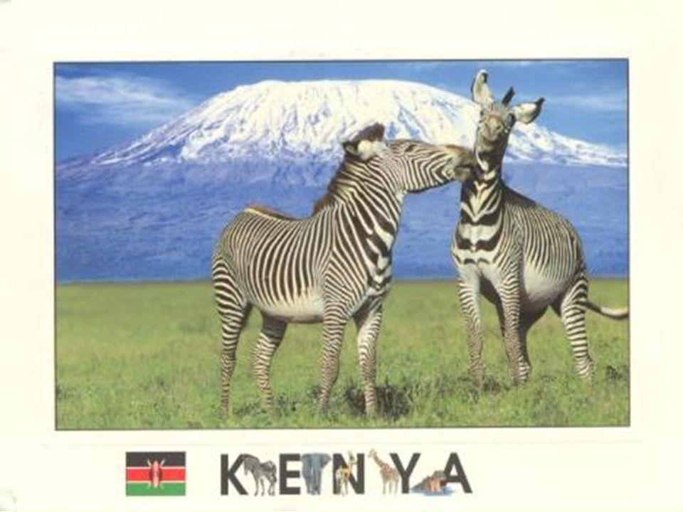 Politika Hlavní město: Nairobi ( 1 678 000) - sídlo programu OSN na ochranu životního prostředí a lidských práv Další města: Mombasa ( 900 000) - přístav a letiště Správní dělení - 7 provincií + 1 samosprávní jednotka Státní zřízení - republika Forma vlády - prezidentská Prezident: Mwai Kibaki Předseda: Mwai Kibaki Státní vlajka Státní znak Členem OSN, Commonwealth, AU