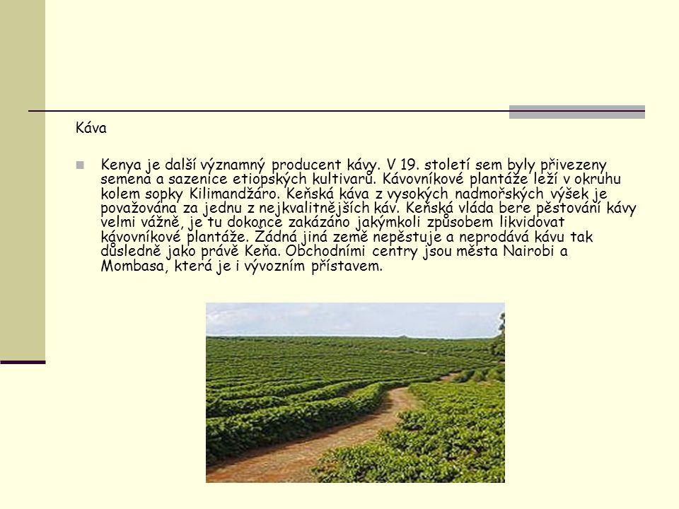Káva Kenya je další významný producent kávy. V 19. století sem byly přivezeny semena a sazenice etiopských kultivarů. Kávovníkové plantáže leží v okru