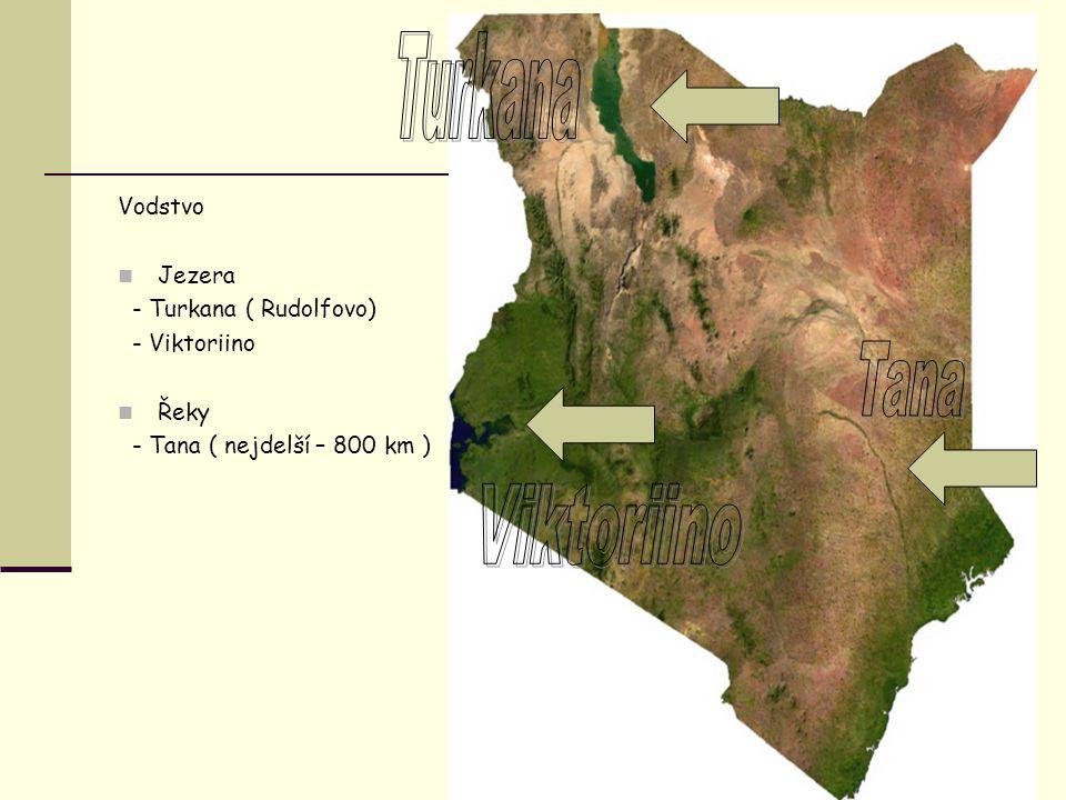 Vodstvo Jezera - Turkana ( Rudolfovo) - Viktoriino Řeky - Tana ( nejdelší – 800 km )
