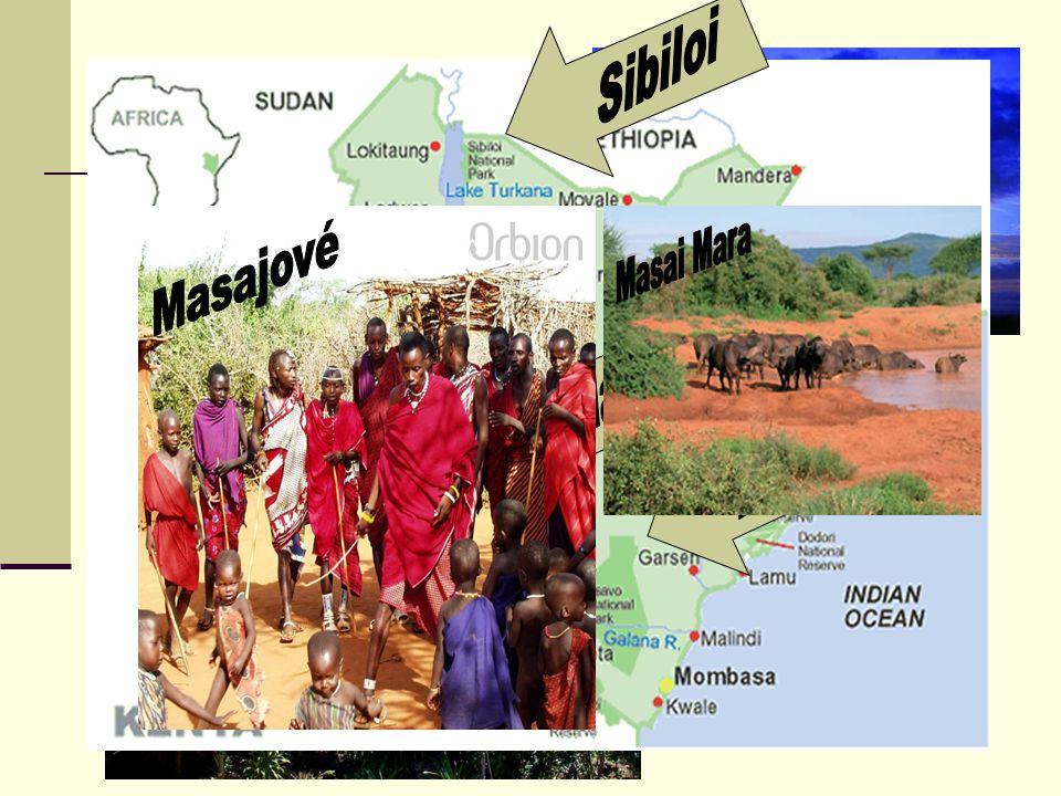 Příroda Savany jsou plné lvů, zeber, žiraf, slonů, gepardů, buvolů, pštrosů a vřískajících paviánů Symbolem Keňské přírody se stala trnitá akácie a mo